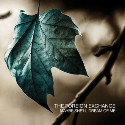foreign-exchange-dream