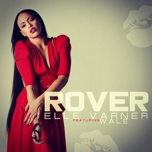 rover-600x600