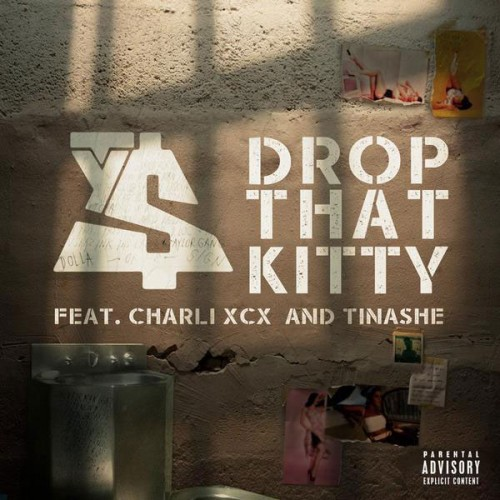 drop-that-kitty