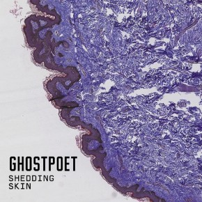 Recenzja: Ghostpoet Shedding Skin