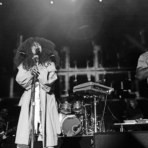 Roots-Pinic-2015-Mel-D.-Cole-79