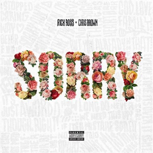 ross-sorry (1)