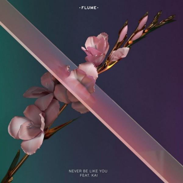 flume-neverbelikeyou