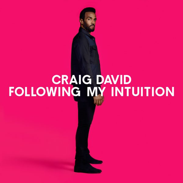 craig_david_following_my_intuition_soulbowlpl